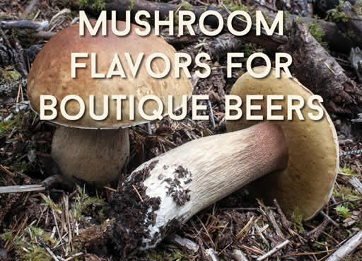 Mushroom Flavors for Boutique Beers
